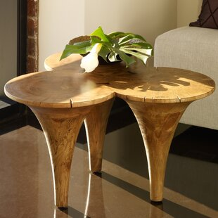 Huizenga Butterfly Coffee Table by Bloomsbury Market