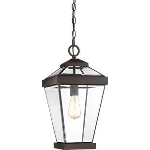 Lauren 1-Light Outdoor Hanging Lantern