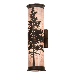 Wylie 2-Light Outdoor Sconce By Loon Peak Outdoor Lighting