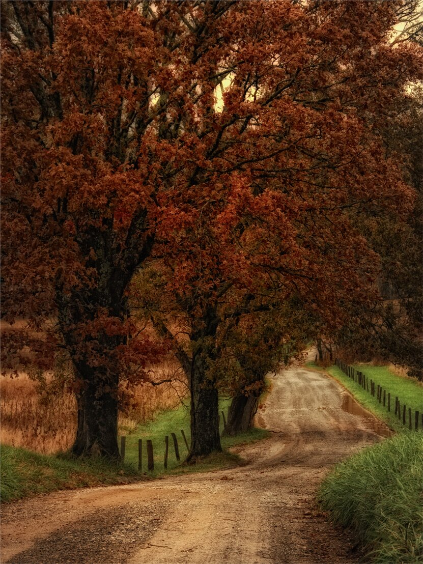 Art Effects Dirt Road By Danny Head Wrapped Photographic Print On Canvas Wayfair