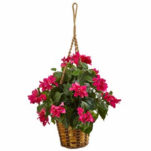 Outdoor hanging baskets with artificial flowers wayfair artificial bougainvillea flower plant hanging plant in basket mightylinksfo