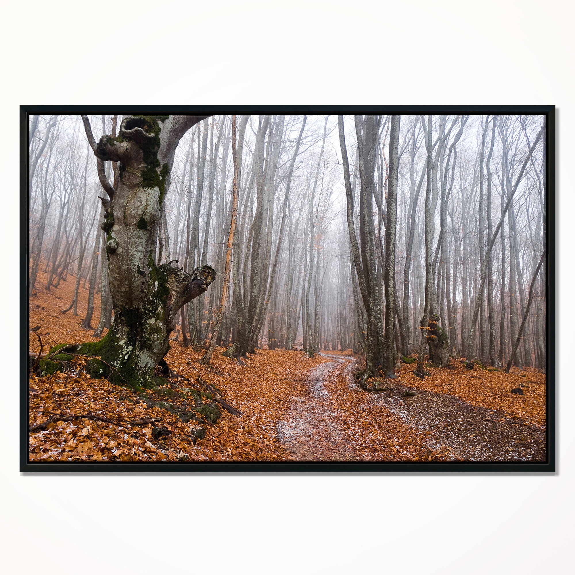 East Urban Home Road Covered By Fallen Leaves Framed Photographic Print On Wrapped Canvas Wayfair