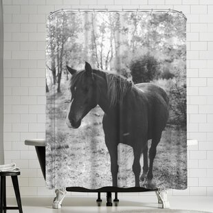 Florent Bodart Horse Single Shower Curtain