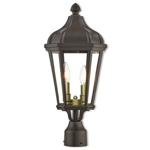 Darby Home Co DeMotte Outdoor 2-Light Lantern Head