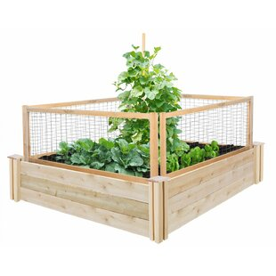4 Ft X 4 Ft Cedar Raised Garden