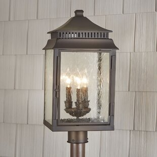 Briarfield Outdoor Post Light by Birch Lane? Heritage