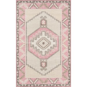 Moyer Indoor Pink Area Rug