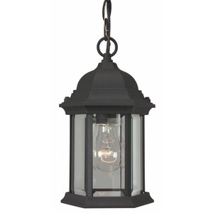 Oakhill 1-Light Hanging Lantern