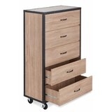 Oman Epple Creative 5 Drawer Chest by 17 Stories