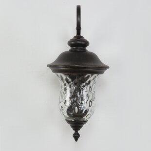 Yosemite Home Decor Sugar Pine 2-Light Outdoor Wall Lantern