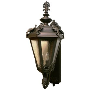 Reviews Petrey 3-Light Outdoor Sconce By Alcott Hill