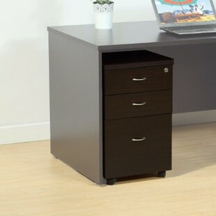 Red Barrel Studio Mapes Spacious 3 Drawer Vertical Filing Cabinet