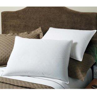Downlite Cotton Pillow