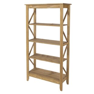 Choe Bookcase By Brambly Cottage