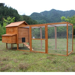 Hen Chicken Coop with Chicken Run