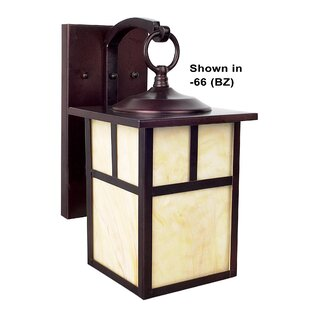 Millwood Pines Burton 1-Light Outdoor Wall Lantern