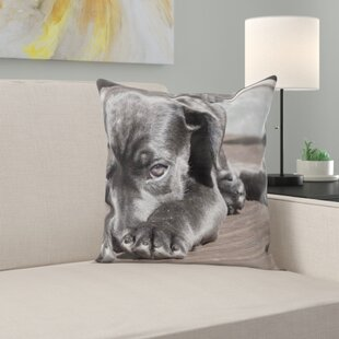 Pet Throw Pillow