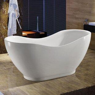 67 x 31 Freestanding Soaking Bathtub ByAKDY