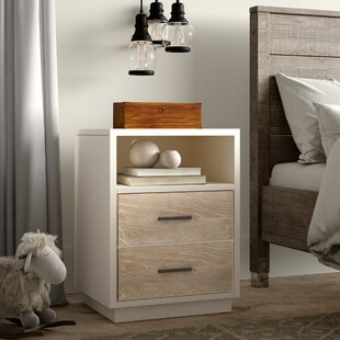 Comparison Frieda 2 Drawer Nightstand by Canora Grey Reviews (2019) & Buyer's Guide