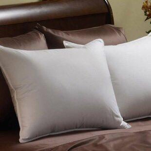 Down Chamber Soft Cotton Queen Pillow ByAlwyn Home