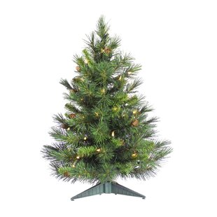 48054b04eed6 Cheyenne 3  Green Artificial Christmas Tree with 100 Clear Lights