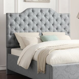 Worcester Upholstered Panel Headboard by Darby Home Co