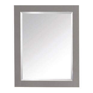 Inexpensive 14000 Series Wall Mirror By Avanity