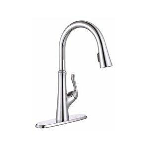 Premier Faucet Concealed Single Handle Pull Down Kitchen Faucet