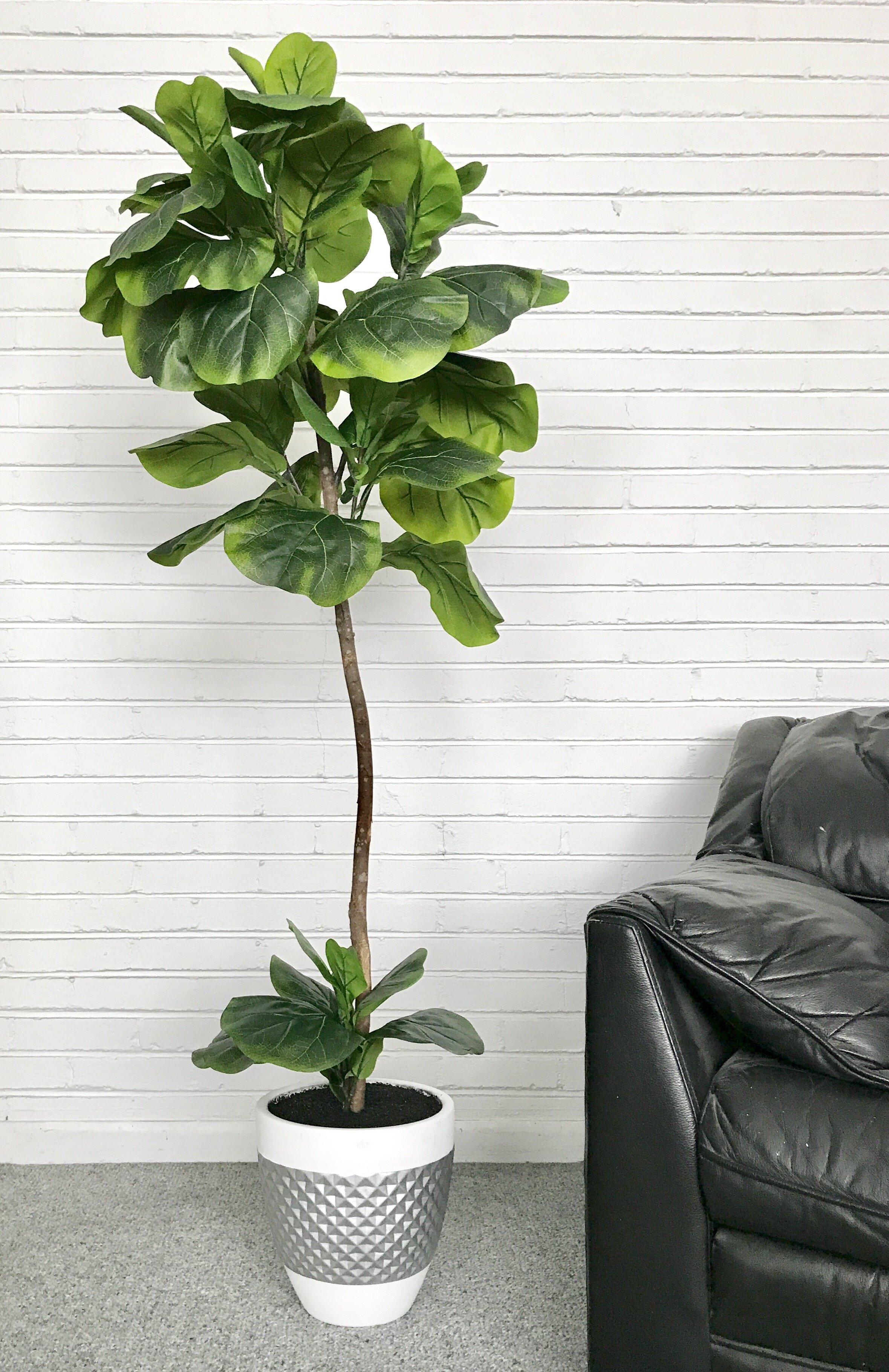 Latitude Run Fiddle Leaf Fig Floor Palm Tree In Pot