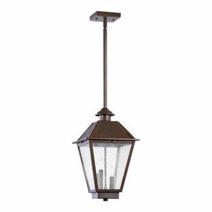 Alcott Hill Mei 3-Light Outdoor Pendant