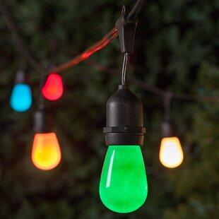 Wintergreen Lighting 24-Light 52 ft. Globe String Lights