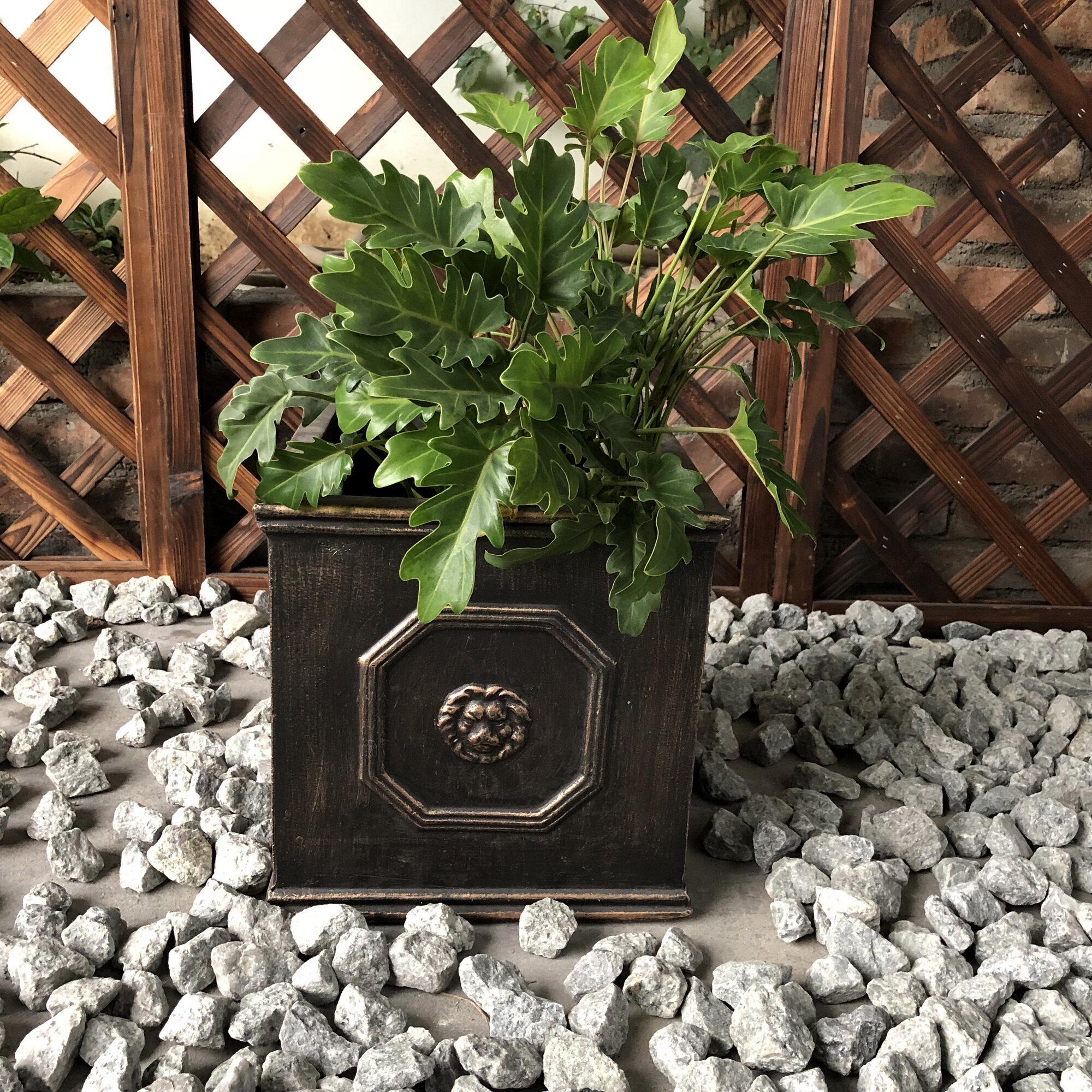Oundle Lion Head Square Concrete Planter Box