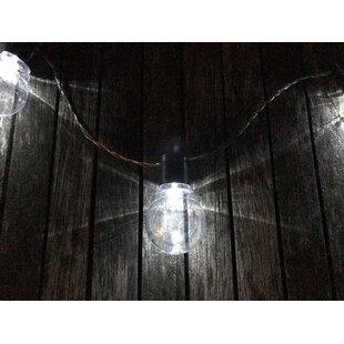 Pomegranate Solutions, LLC Solar Edison 12 Light Globe String Lights