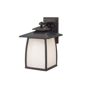 Best Reviews Alhambra 1-Light Outdoor Wall Lantern By Loon Peak