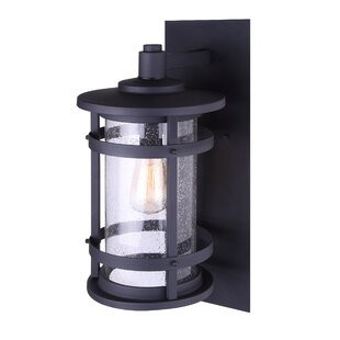 Breakwater Bay Wilhite Outdoor Wall Lantern