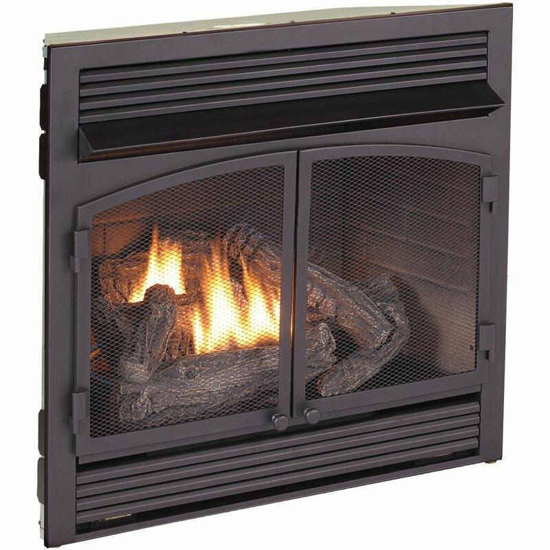 Sensational Vent Free Recessed Natural Gas Propane Fireplace Insert Interior Design Ideas Skatsoteloinfo