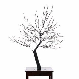 Hi-Line Gift Ltd. Tree String Lights