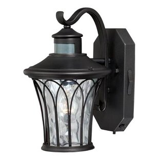 Alcott Hill Hylan 1-Light Outdoor Wall Lantern
