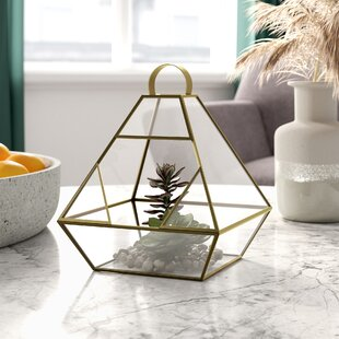 Batley Glass Terrarium By World Menagerie