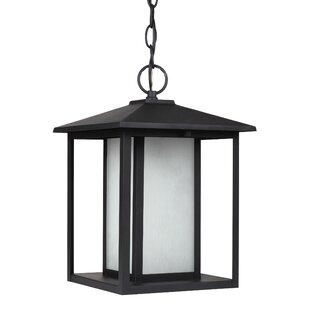 Three Posts Hayner 9W 1-Light Outdoor Pendant