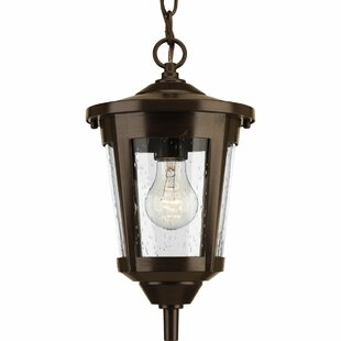Duke 1-Light Oudoor Hanging Lantern