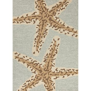 Osprey Hand-Hooked Light Green Indoor/Outdoor Area Rug