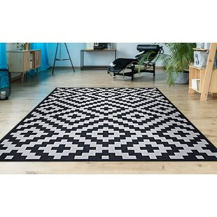 Daksh Black Indoor/Outdoor Area Rug