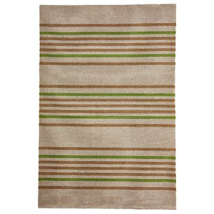 Mansfield Stripe Hand-Woven Brown/Green Indoor/Outdoor Area Rug