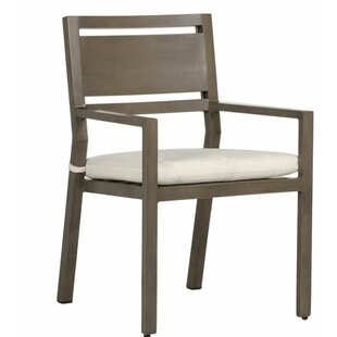 Avondale Patio Dining Chair with Cushion (Set of 2)