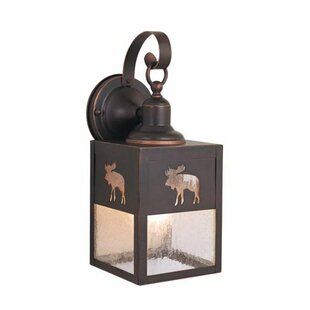 Josefina 1-Light Outdoor Wall Lantern