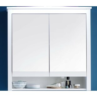 Silcox 81 X 80cm Mirrored Wall Mounted Cabinet By Brayden Studio