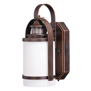 Millwood Pines Shirley Dualux® 1-Light Outdoor Wall Lantern