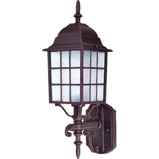 Ivery 1-Light Outdoor Sconce