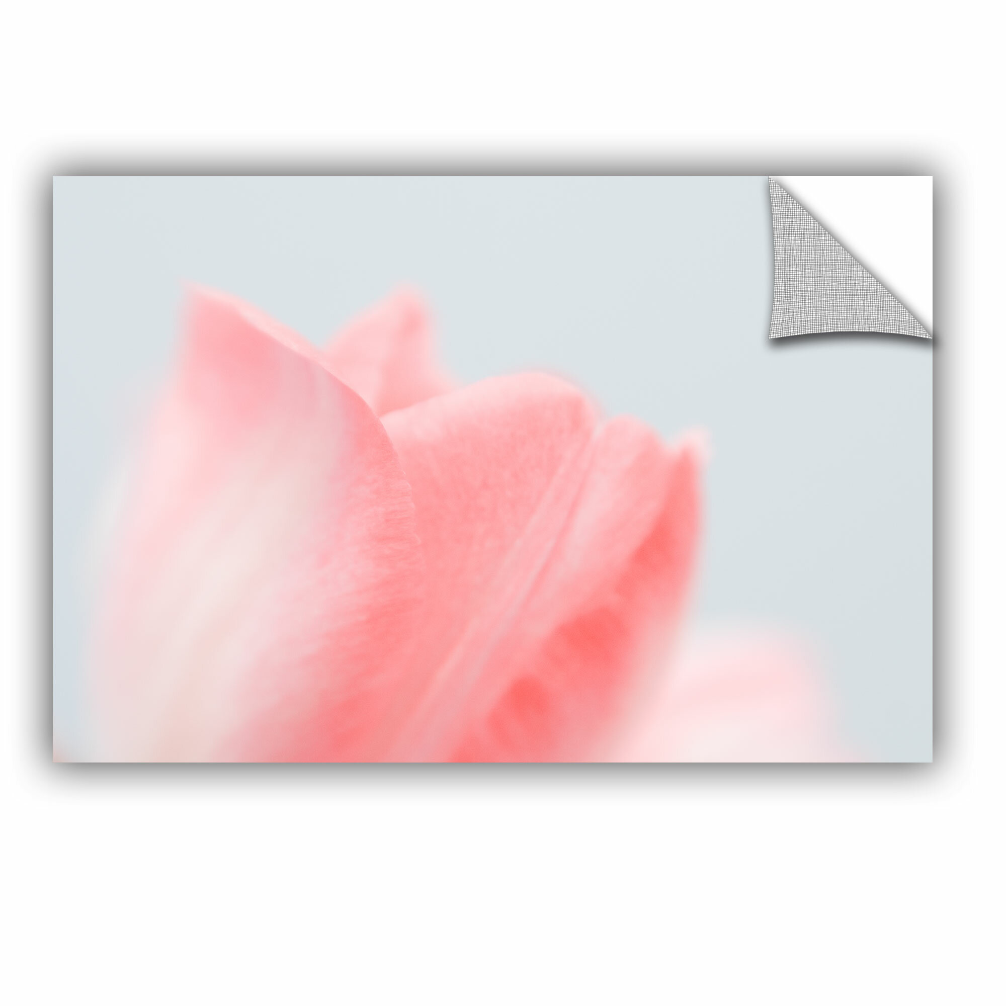 Artwall Judy Stalus Pale Pink Tulip Removable Wall Decal Wayfair